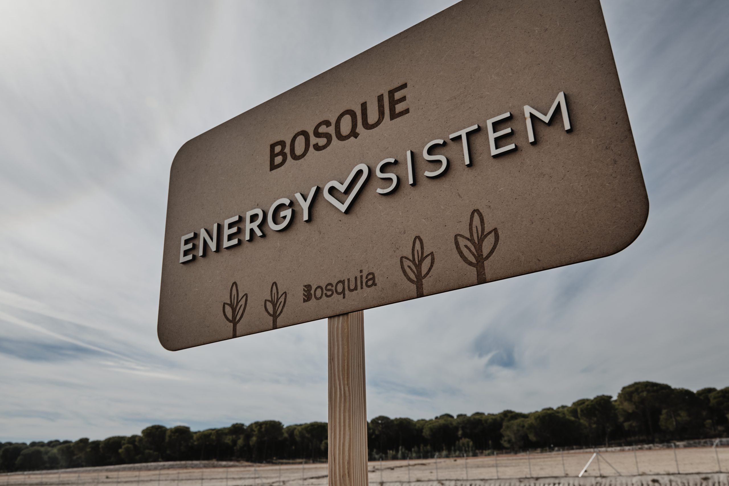Bosque Energy Sistem